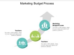 Marketing Budget Process Ppt PowerPoint Presentation Layouts Smartart Cpb
