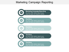 Marketing Campaign Reporting Ppt PowerPoint Presentation Slides Designs Download Cpb