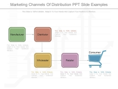 Marketing Channels Of Distribution Ppt Slide Examples