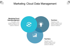 Marketing Cloud Data Management Ppt PowerPoint Presentation Show Examples Cpb
