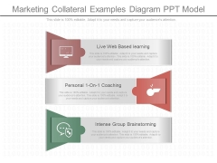 Marketing Collateral Examples Diagram Ppt Model