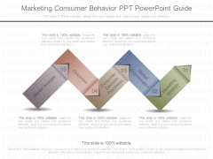 Marketing Consumer Behavior Ppt Powerpoint Guide