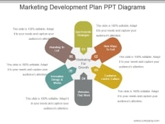 Marketing Development Plan Ppt Diagrams