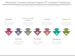 Marketing E Commerce Sample Diagram Ppt Examples Professional