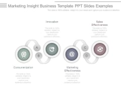 Marketing Insight Business Template Ppt Slides Examples