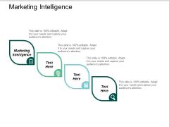 Marketing Intelligence Ppt PowerPoint Presentation Ideas Graphics Example Cpb