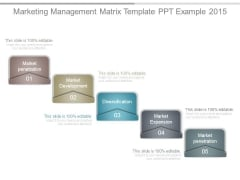 Marketing Management Matrix Template Ppt Example 2015