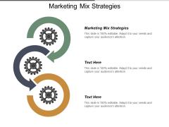 Marketing Mix Strategies Ppt PowerPoint Presentation Summary Templates Cpb