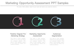 Marketing Opportunity Assessment Ppt Samples