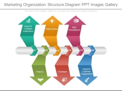 Marketing Organization Structure Diagram Ppt Images Gallery