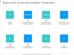 Marketing Plan Implementation Executive Summary Market Overview Guidelines PDF