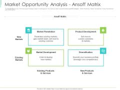 Marketing Plan Implementation Market Opportunity Analysis Ansoff Matrix Sample PDF