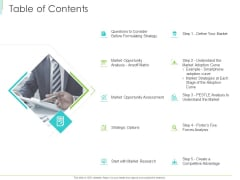 Marketing Plan Implementation Table Of Contents Ppt Inspiration Summary PDF