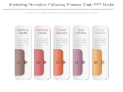 Marketing Promotion Following Process Chart Ppt Model