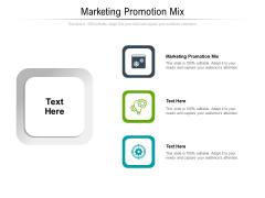 Marketing Promotion Mix Ppt PowerPoint Presentation Portfolio Vector Cpb Pdf