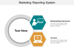 Marketing Reporting System Ppt PowerPoint Presentation Styles Outfit Cpb