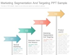 Marketing Segmentation And Targeting Ppt Sample