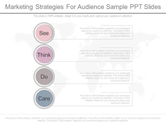 Marketing Strategies For Audience Sample Ppt Slides