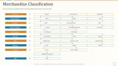 Marketing Strategies For Retail Store Merchandise Classification Summary PDF