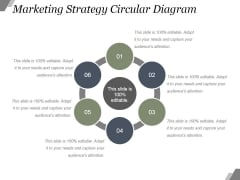 Marketing Strategy Circular Diagram Ppt PowerPoint Presentation Picture