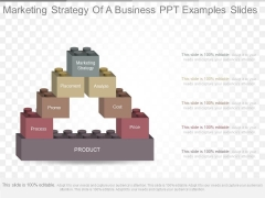 Marketing Strategy Of A Business Ppt Examples Slides