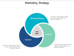 Marketing Strategy Ppt PowerPoint Presentation Layouts Images Cpb