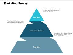 Marketing Survey Ppt PowerPoint Presentation Model Graphics Design Cpb