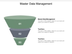 Master Data Management Ppt PowerPoint Presentation Infographic Template Introduction Cpb