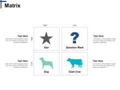 Matrix Competitive Differentiation Ppt PowerPoint Presentation Visual Aids Professional