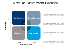 Matrix For Product Market Expansion Ppt PowerPoint Presentation Ideas Skills