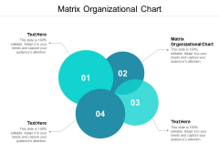Matrix Organizational Chart Ppt PowerPoint Presentation Model Inspiration Cpb
