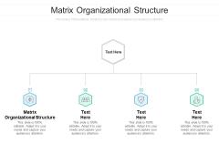 Matrix Organizational Structure Ppt PowerPoint Presentation Slides Vector Cpb