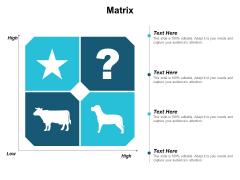 Matrix Planning Ppt PowerPoint Presentation Slides Files