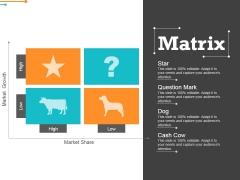 Matrix Ppt PowerPoint Presentation Gallery Format Ideas