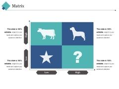 Matrix Ppt PowerPoint Presentation Outline Layout Ideas