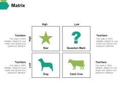 Matrix Ppt PowerPoint Presentation Visual Aids Infographics