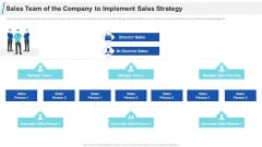 Maximizing Profitability Earning Through Sales Initiatives Sales Team Of The Company To Implement Sales Strategy Introduction PDF