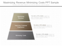 Maximizing Revenue Minimizing Costs Ppt Sample