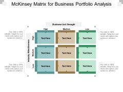 Mckinsey Matrix For Business Portfolio Analysis Ppt PowerPoint Presentation Outline Rules