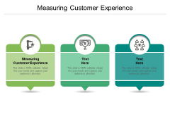 Measuring Customer Experience Ppt PowerPoint Presentation Icon Graphics Pictures Cpb