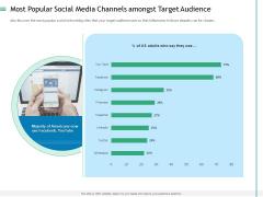 Measuring Influencer Marketing ROI Most Popular Social Media Channels Amongst Target Audience Designs PDF