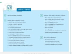Measuring Influencer Marketing ROI Table Of Contents Ppt Visual Aids Ideas PDF
