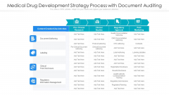Medical Drug Development Strategy Process With Document Auditing Ppt PowerPoint Presentation Gallery Show PDF