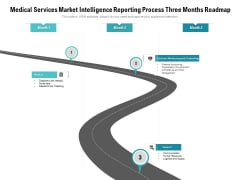 Medical Services Market Intelligence Reporting Process Three Months Roadmap Demonstration