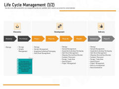 Medicine Promotion Life Cycle Management Delivery Ppt PowerPoint Presentation Icon Rules PDF