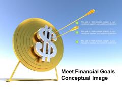 Meet Financial Goals Conceptual Image Ppt PowerPoint Presentation Professional Grid