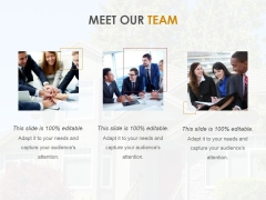 Meet Our Team Ppt PowerPoint Presentation Inspiration Infographic Template