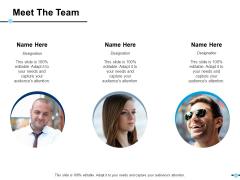 Meet The Team Communication Teamwork Ppt PowerPoint Presentation Outline Model