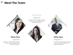 Meet The Team Ppt PowerPoint Presentation Layouts Graphics