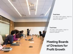 Meeting Boards Of Directors For Profit Growth Ppt PowerPoint Presentation File Template PDF